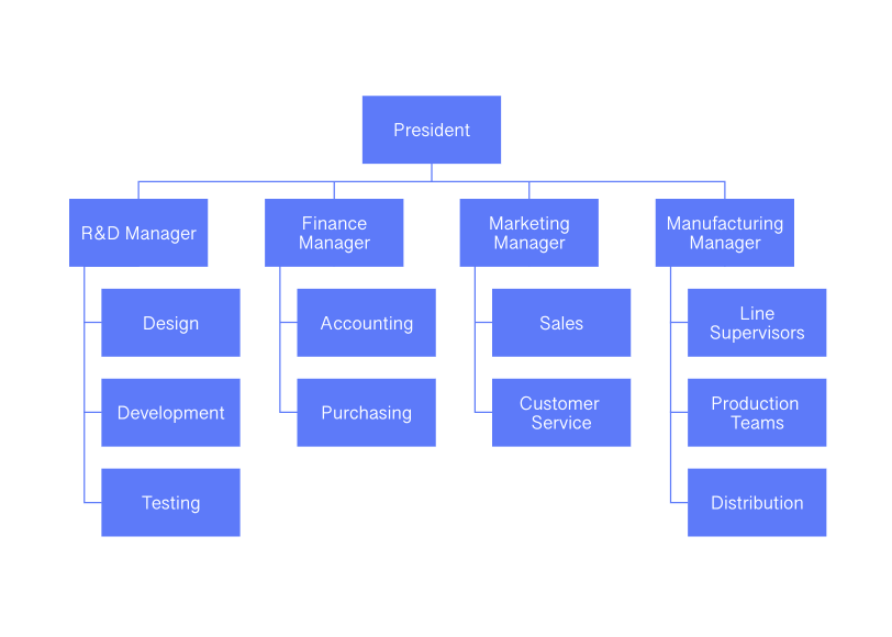 Functional Organizational Chart Cacoo