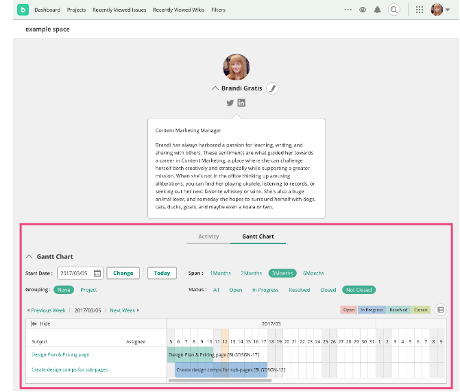 Gantt Chart in Profile | Backlog