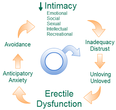 erectile dysfunction relationship cycle