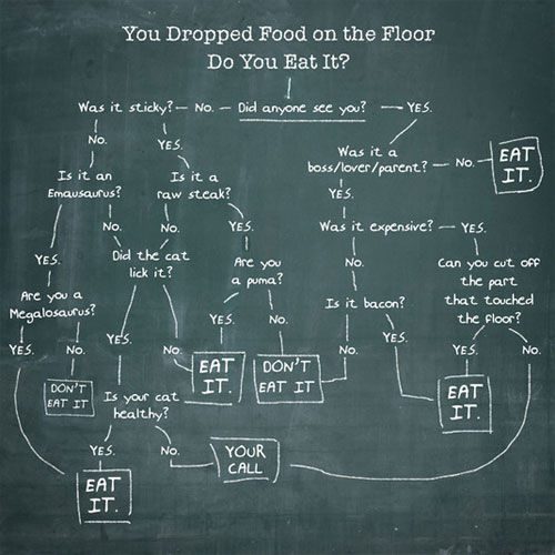 9 - Do you eat it flowchart
