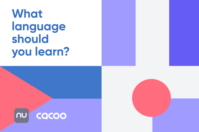 [FLOWCHART] What language should you actually learn?